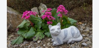 kočka mourovaná z kamene