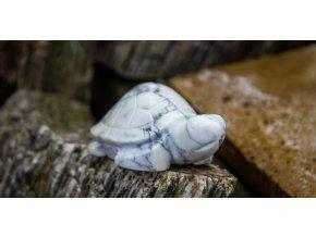 Želva malá (onyx)