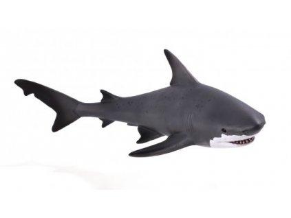 Animal Planet Žralok bělavý