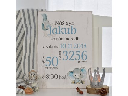 Dětská cedulka - Můj první den (kluk) SK