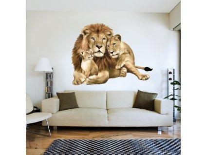 Lví rodinka II
