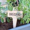 Zápich na bylinky - Oregáno