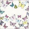 Ubrousky - motýlci