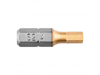 Bity,  imbus 4 x 25 mm, 2 ks   GRAPHITE 57H968