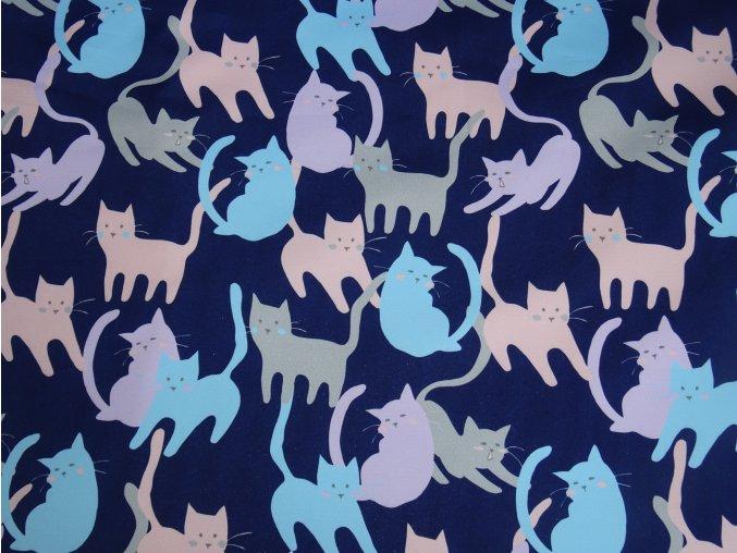 Softshell letní Kočičky