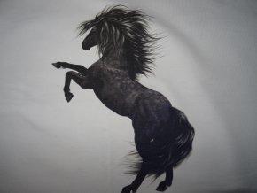 Panel z teplákoviny Černý kůň