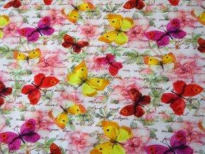 Teplákovina motýlci na písmu