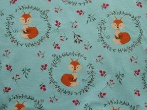 Lišky na modré