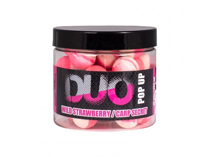 pop duo strawberry