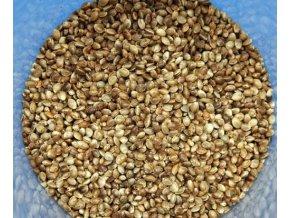 JET Fish Konopné semínko 500g