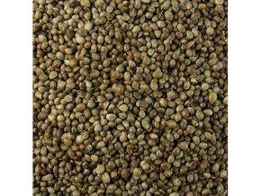 Sportcarp konopné semeno