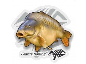 Nálepka velká Giants Fishing Kapr lysec