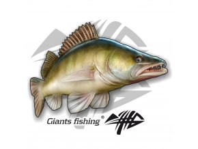 Nálepka velká - Giants Fishing Candát