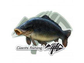 Giants Fishing Nálepka malá - Giants Fishing Kapr šupináč