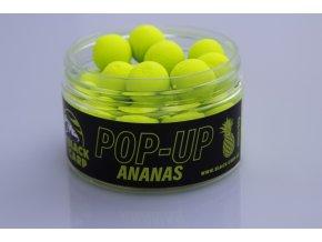 ananas pop up 15 50