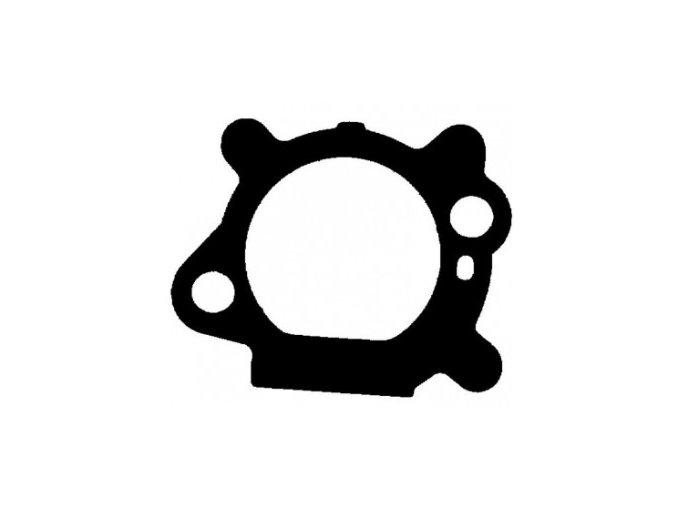 Těsnění karburátoru / filtr Briggs & Stratton Quantum (272653)