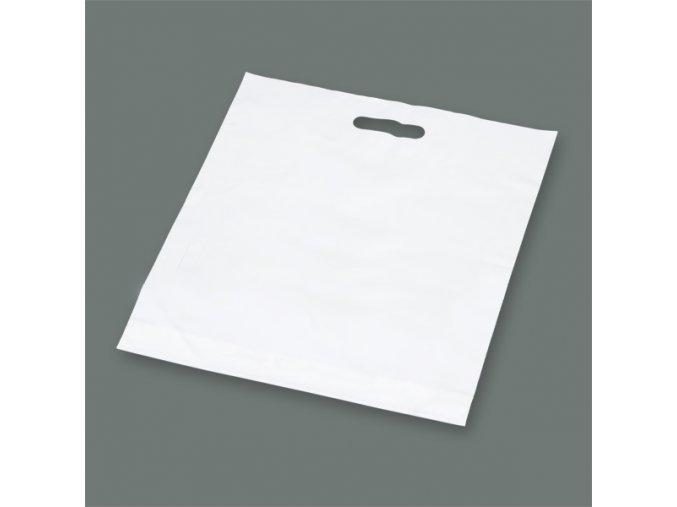Taška igelitová se zpevněným průhmatem bílá - 600x550mm