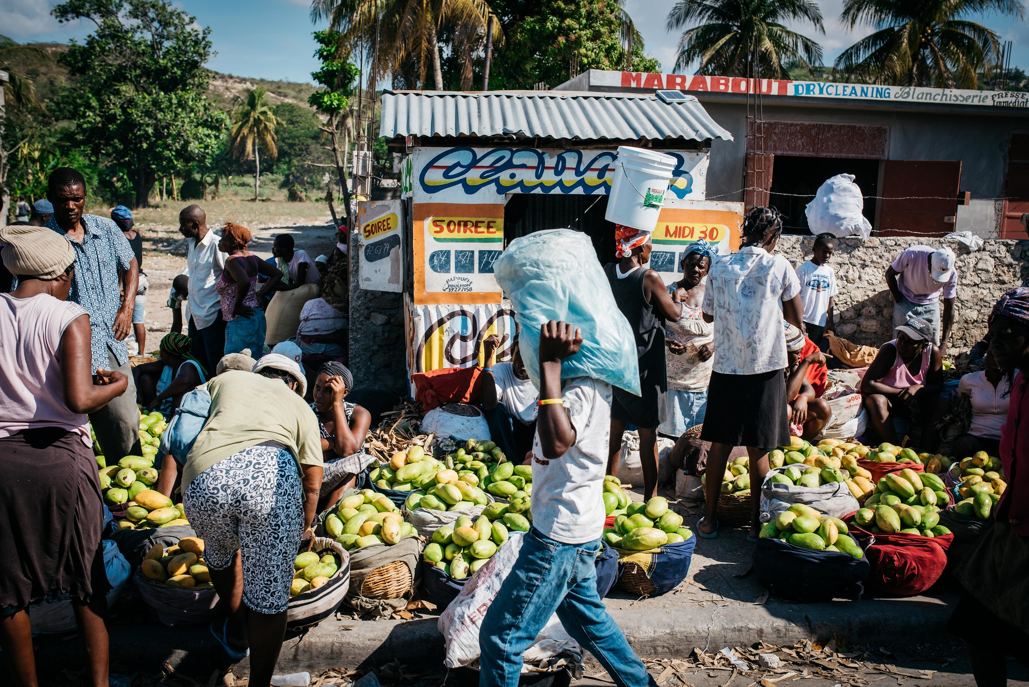 Káva Haiti - Eko-friendly káva prvotřídní kvality