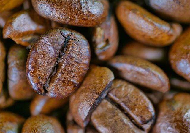 Brazílie Facenda - Méně známá z brazilských káv, která přesto má co nabídnout