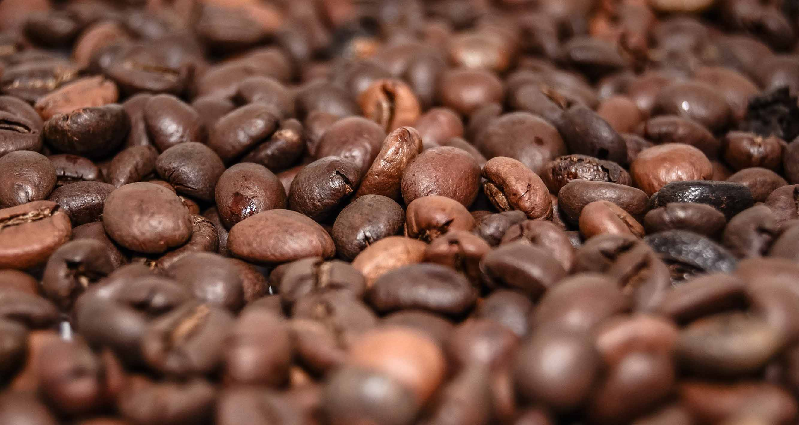 Vietnam - Od francouzských kolonizátorů až po jednoho z největších producentů kávy