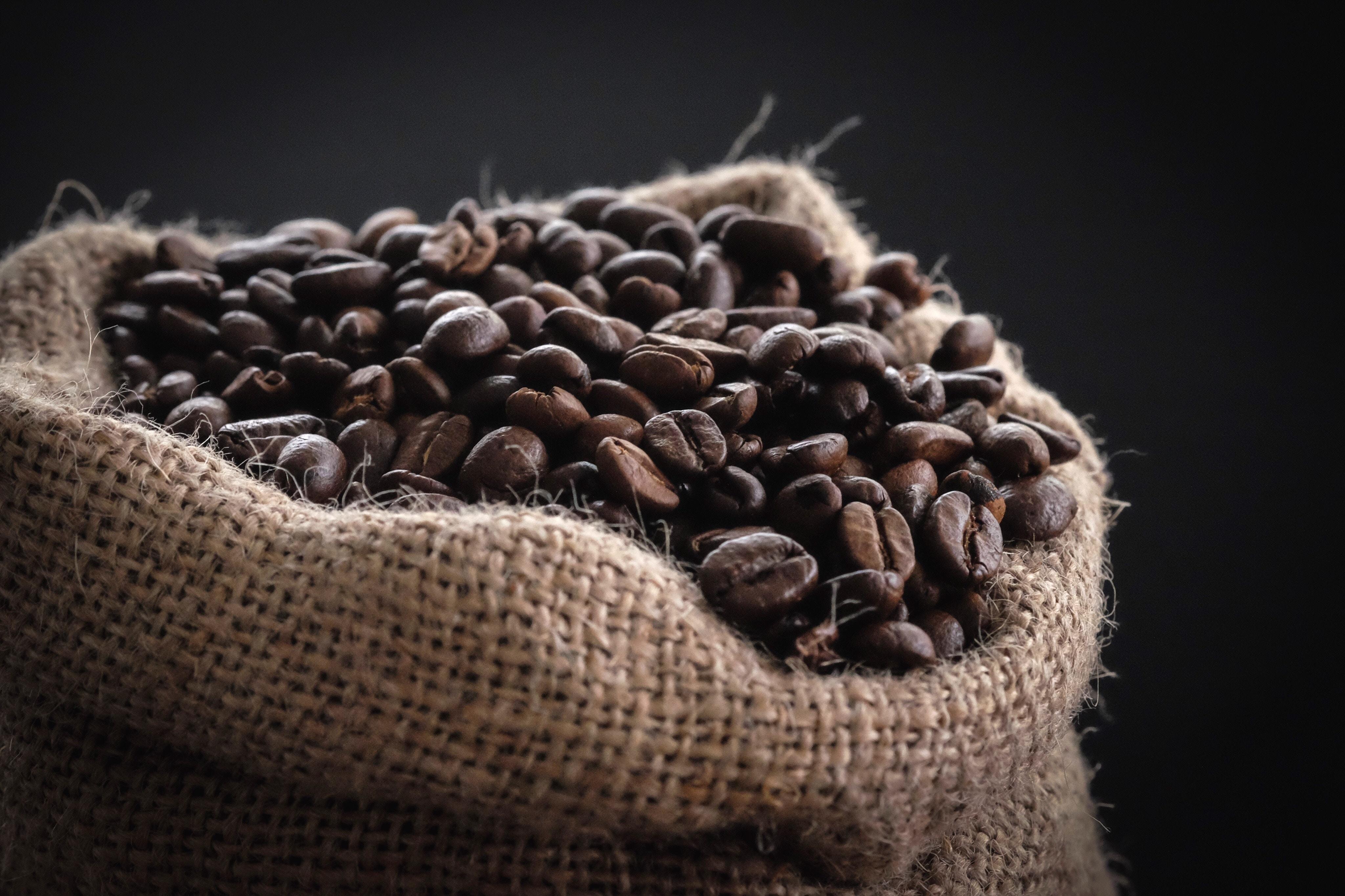 Panama - Úžasná káva dostupná jen v omezeném množství