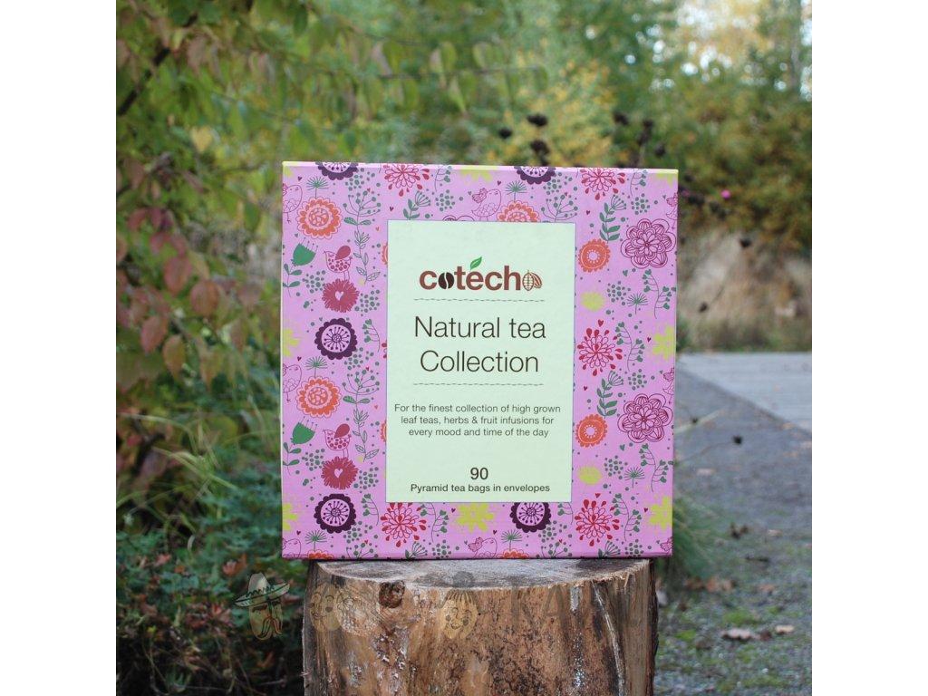 Cotecho Natural Tea Collection