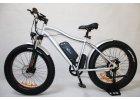 Elektrokolo ELBS F750 Fatbike