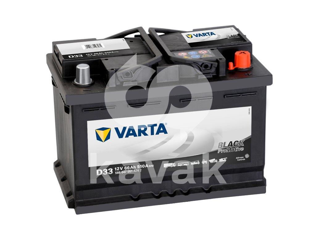 Varta Promotive Black 12V 66Ah 510A 566 047 051