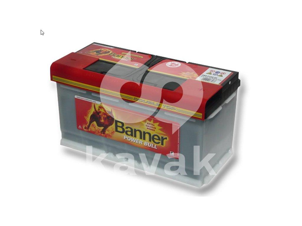 Banner Power Bull PROfessional 12V 100Ah 800A