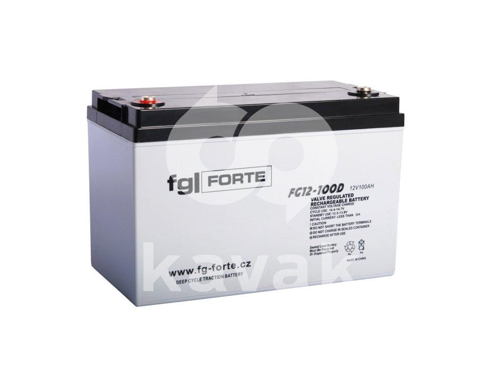 fgFORTE 12V 100Ah FG12-100D