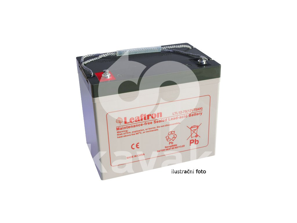 LEAFTRON LTL12-65  12V 65Ah