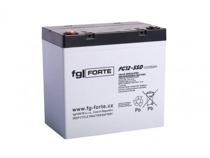 fgFORTE 12V 55Ah FG12-55D