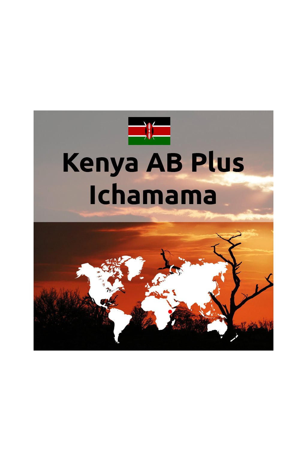 Kenya AB Plus Ichamara
