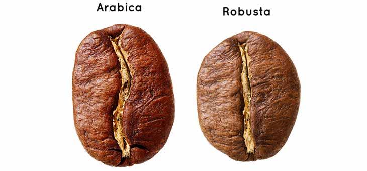 Tipy o kávě