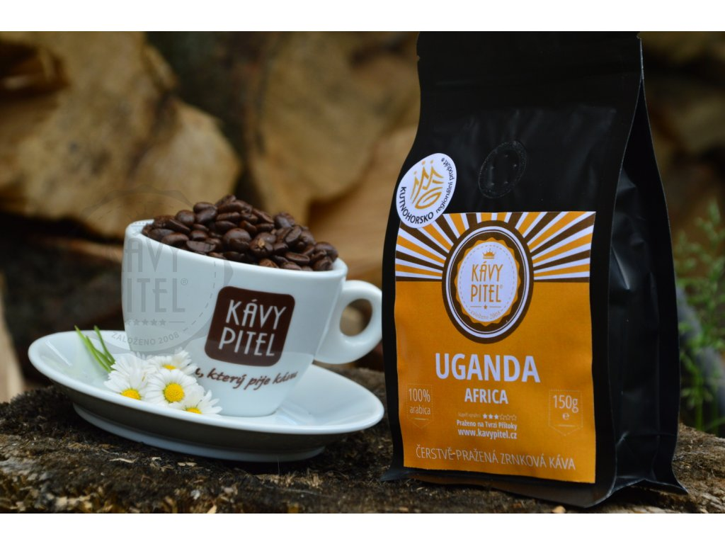 uganda kava prazena kavy pitel