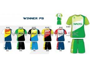 Winner P3