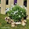 Zahradní mrazuvzdorný květináč ŽELVA střední