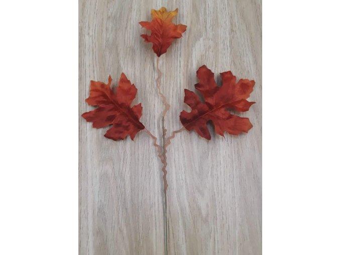 Listy dubu