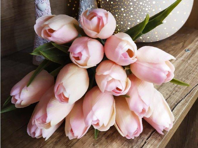 Tulipány BABY PINK A33 eshop