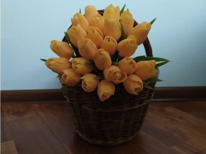Tulipán světle oranžový