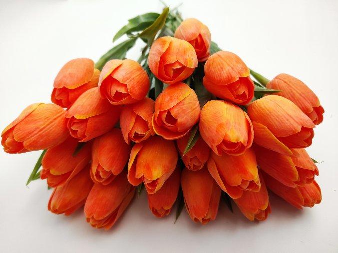 Tulipán Light Orange A81