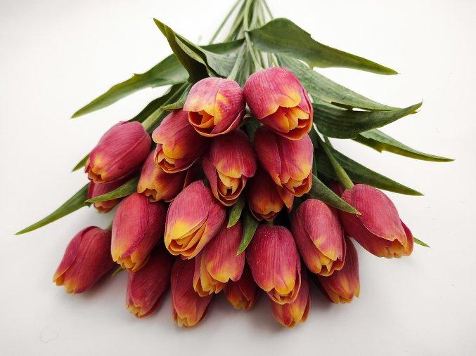 Tulipán Red Orange A78