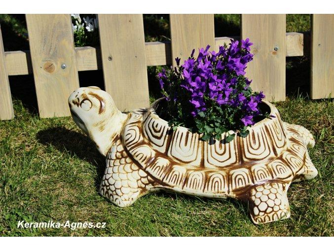 Zahradní mrazuvzdorný květináč ŽELVA XL