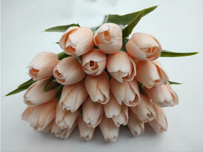 Tulipán Peach A75