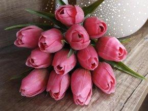 tulip DK pink green2