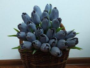 Tulipán Levandulově šedý