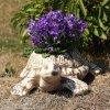 Zahradní květináč ŽELVA kulatá