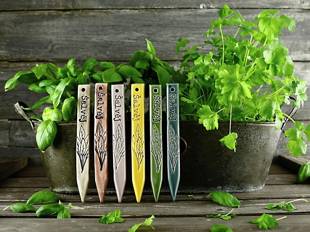 Zápich na bylinky šalvěj