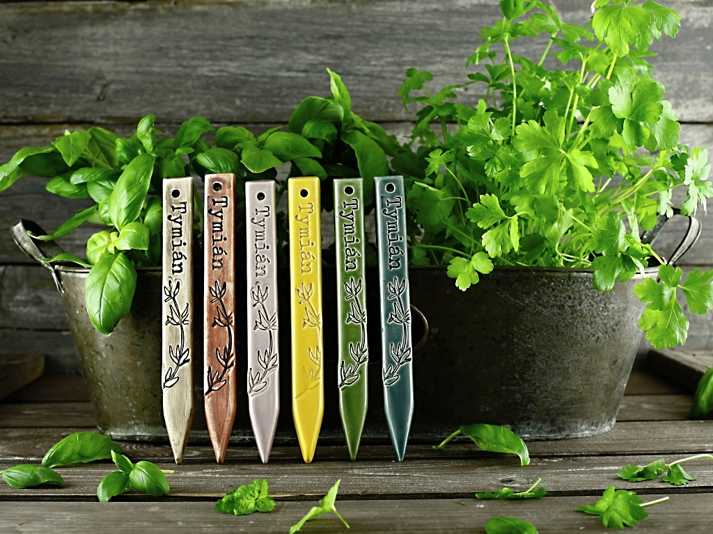 Zápich na bylinky tymián