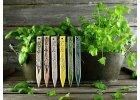 Zápich na bylinky šalvia
